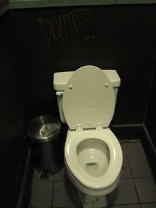 Dump... Saratoga Springs, NY