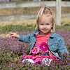 Stella March Farm Shoot Raw  (185)