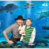 Aquarium12312013
