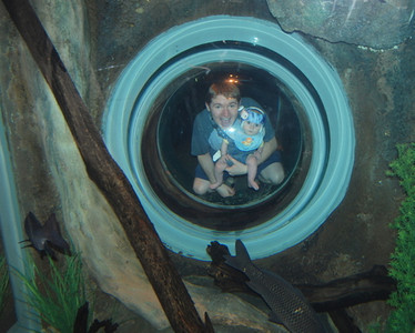 Jacob crawled in the little kids' tunnel behind this tank and looked through into the fish habitat.