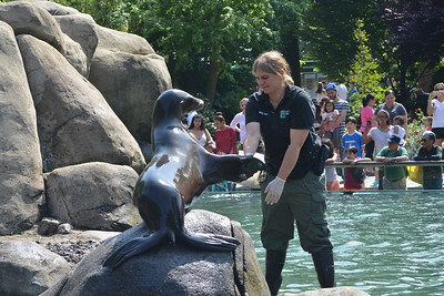 Central Park Zoo - May 25, 2015 Memorial Day