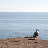 Shell Beach<br /> San Luis Obispo, California - 01.05.14<br /> Credit: J Grassi