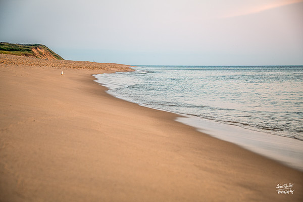 Newcomb Hollow  Beach, Wellfleet