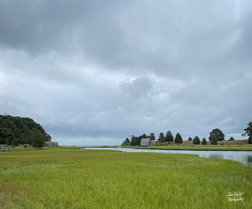 Salt Pond Eastham