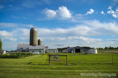 An Amish farm near Clare, Michigan.