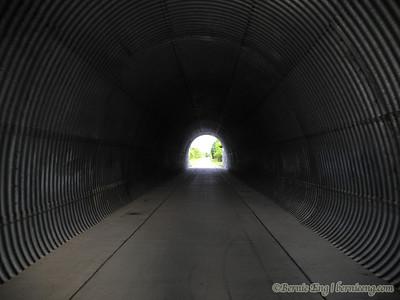 Spooky tunnel.