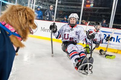 MeganBearder_USAWARRIOR_hockey_01