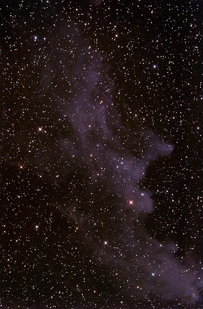 IC2118 Witch Head Nebula in Eridanus