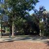 Cinders at Sheldrake Park Basketball Hoop