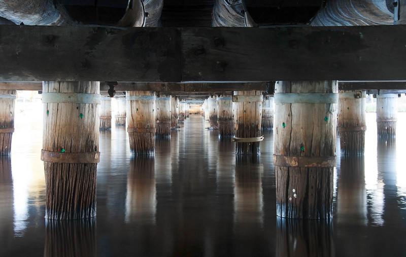 Riverton Bridge Understory