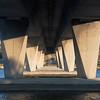 Day 15 - Stirling Bridge Understory