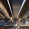 Day 12 - The Narrows Bridge Understory