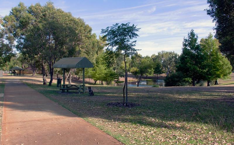 Cinders at Sheldrake Park shelter