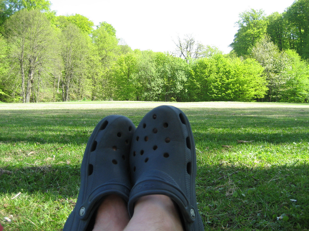 Danes don't like crocs- I do.