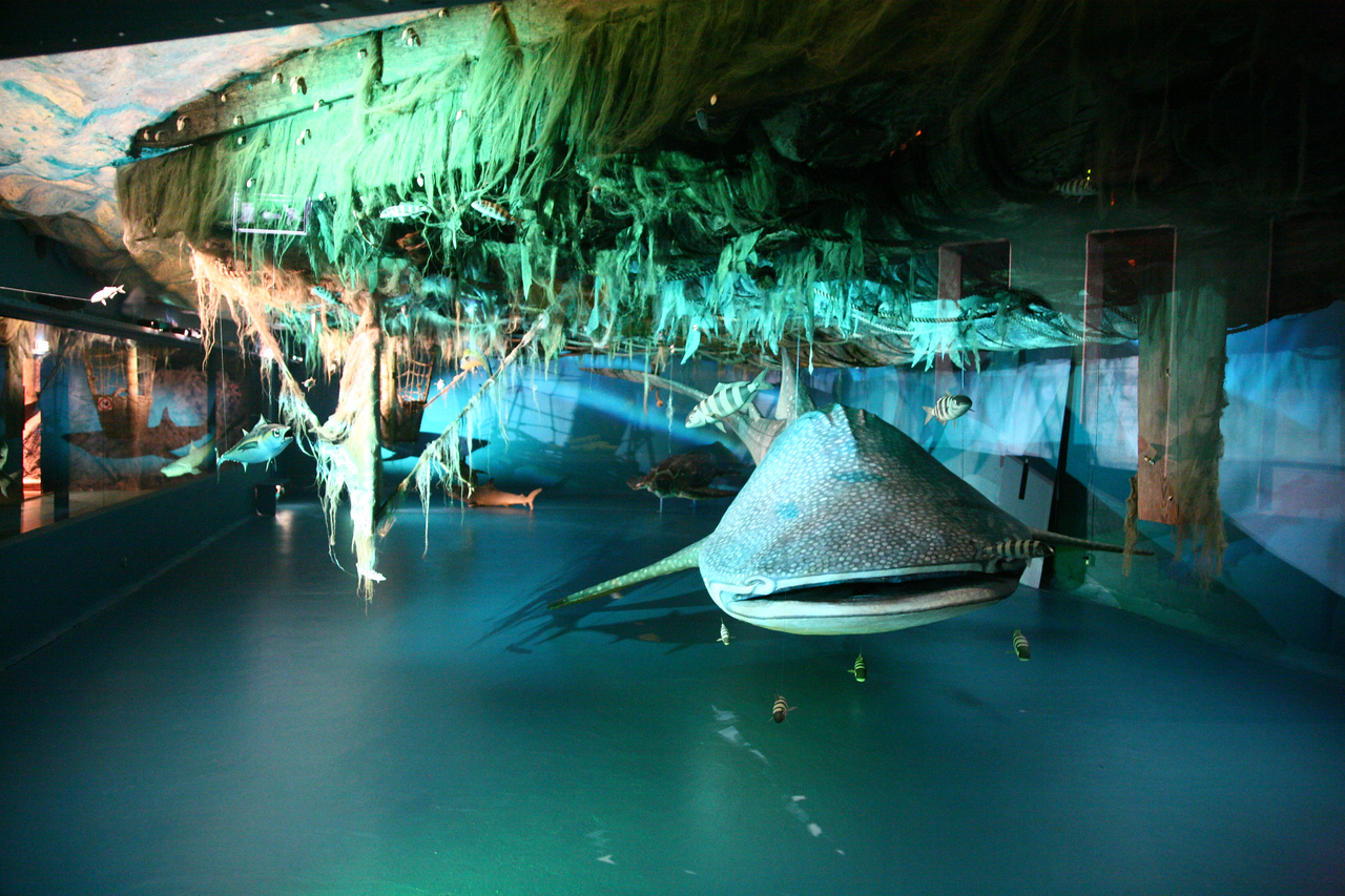 Really cool- directly under the Kon Tiki was a model of the sea life it encountered (the ceiling is the bottom of the boat). I thought this was a really great way to tie in ecology and the voyage.