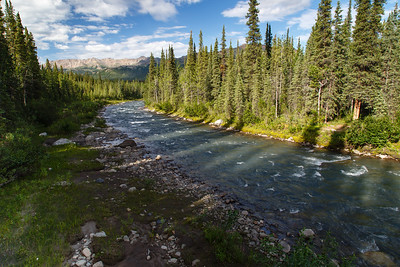 Stream near Denali Visitor Center