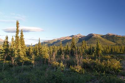 Mountain view near the Denali Park Hotel