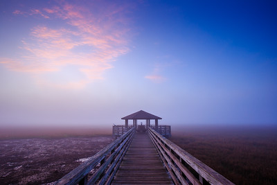 Fish Haul Creek foggy sunrise
