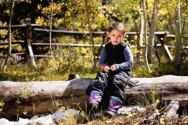 meeks-cabin-camping-817354