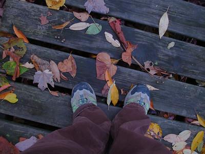 Autumn in Ohio.