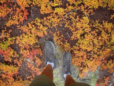 East Longs Peak Trail (Sept 2008)