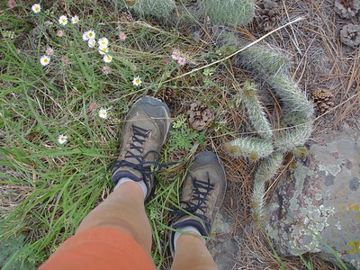 Hogback Ridge trail (Boulder, CO)