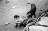 1972-Mexico Caving  027