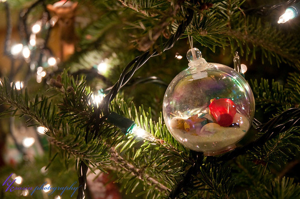 Our new ornament for the year - from our cruise in March