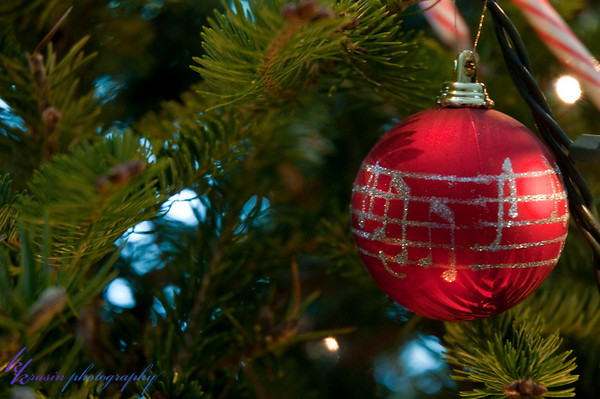 There are a couple ornaments I take pics of every year...