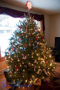Our tree - first one in the house!