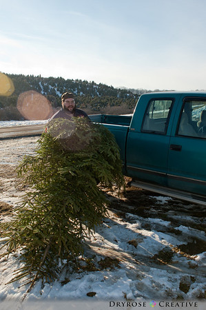 Cutting the Woytek Family Christmas Tree