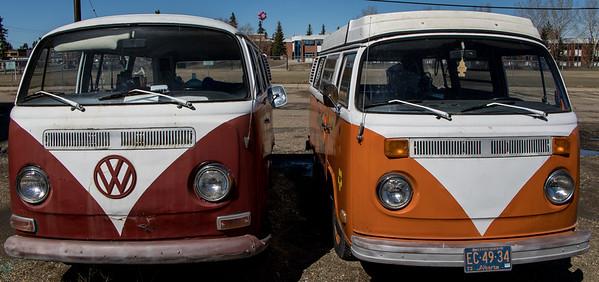 VW Buses