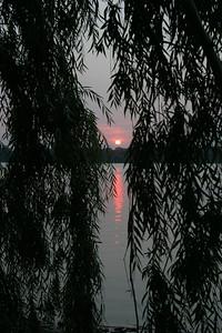 sunset9960
