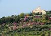 Provence 325 ac sh100