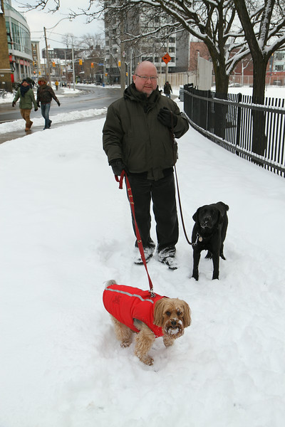 Dec. 26/13 - Pack walk with Sophie & Memphis, on Wellesley St. E.