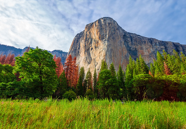 Breathtaking El Capitan