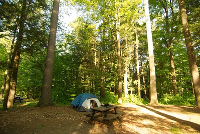 This is where we camped, it was 18.00 a day.  This was a state Park in the city of Lake George.  There were only two spots left.