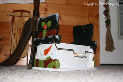 20081201-TableRockLake-Christmas-10