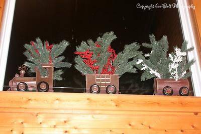 20081201-TableRockLake-Christmas-05