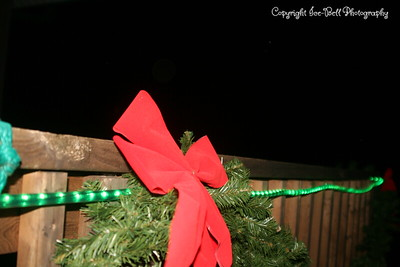 20081201-TableRockLake-Christmas-16
