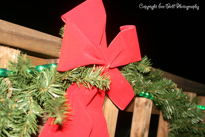 20081201-TableRockLake-Christmas-14