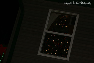 20121225-ChristmasDecorations-06
