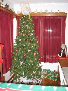 December 25, 2005  Dining room Christmas tree and decorations