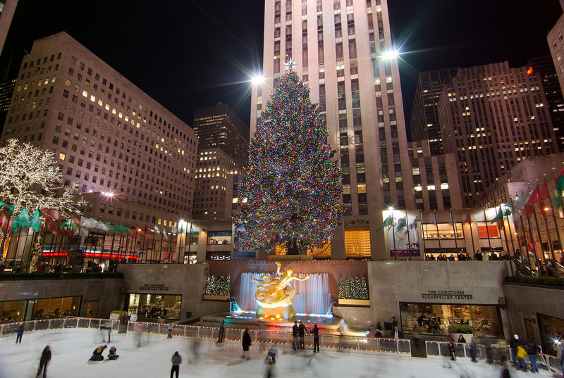 The Christmas tree that adorns Rockefeller Center is typically a Norway Spruce. The minimum requirement is that the tree be 65 feet tall and 35 feet wide, however manager of Rockefeller Center gardens prefers the tree be between 75 and 90 feet tall and proportionally wide. Norway Spruce that grow in forests don't typically reach these proportions, so the Rockefeller Center Christmas tree tends to be one that was ornamentally planted in someone's front or back yard. There is no compensation offered in exchange for the tree, other than the pride of having donated the tree that appears in Rockefeller Center.