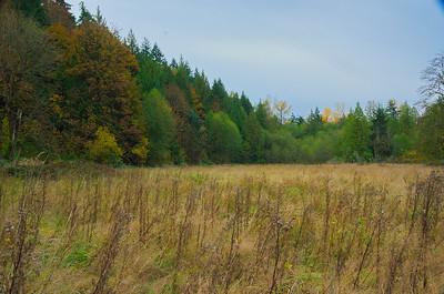 2011-11-04_0006.jpg / ACDSee Pro 5 JPEG Image