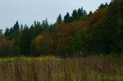 2011-11-04_0004.jpg / ACDSee Pro 5 JPEG Image
