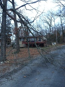 20150319-228Overlook-NeighborsTree