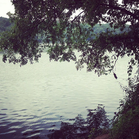 8_miles_on_the_beautiful_Potomac_heritage_trail_this_morning