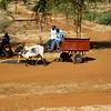 CS7G0056-20120319-Monday to and at Amboseli-0010