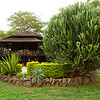 CS7G0047-20120320-Tuesday at Amboseli-0012